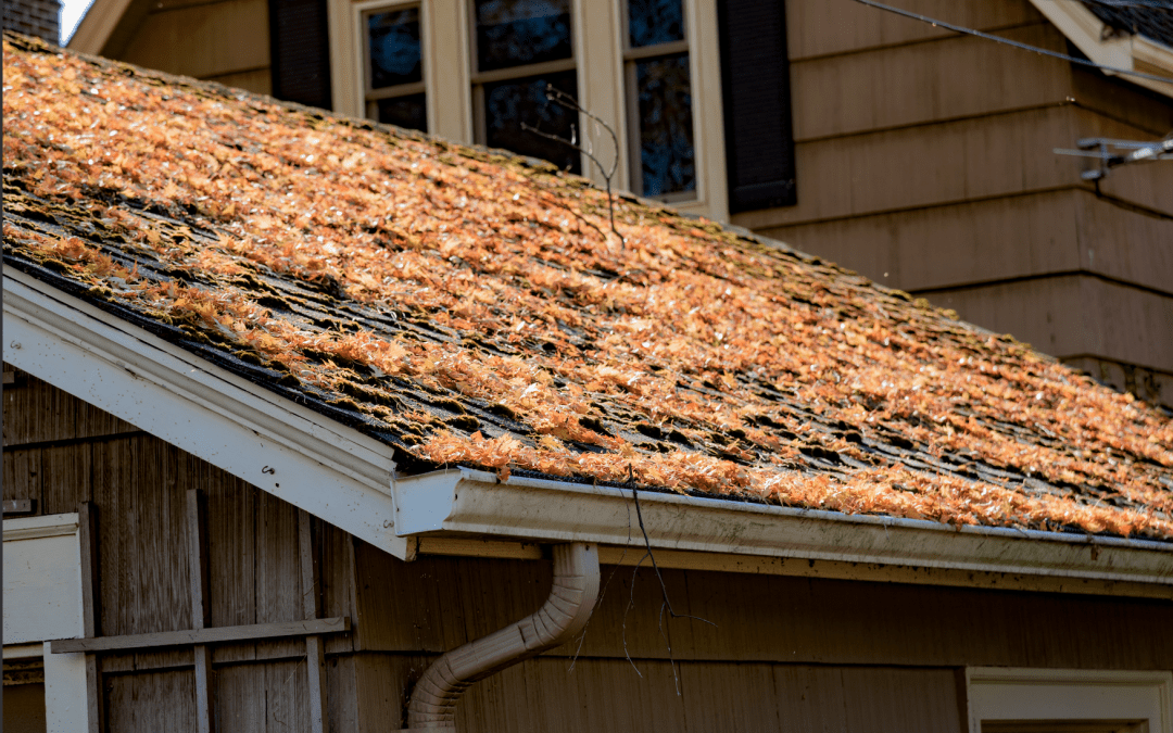 Top Benefits of Gutter Cleaning